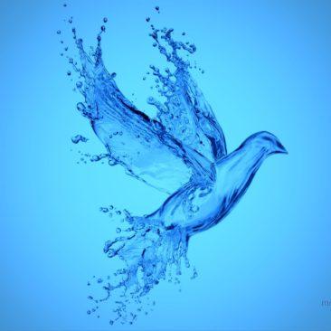 Aqua Product